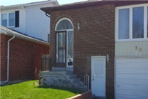 38 Millhouse Cres, Toronto