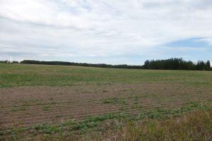Hwy 20 Twp 482, Rural Brazeau County