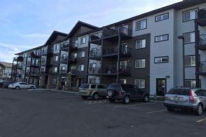 408 3353 16A Avenue, Edmonton