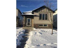 331 Saddlebrook CI NE, Calgary