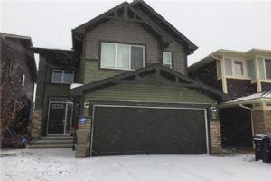 11 Saddlelake WY NE, Calgary