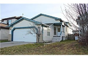 211 MARTIN CROSSING CL NE, Calgary