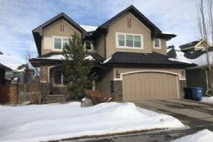 241 Elgin Estates PA SE, Calgary