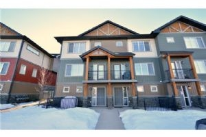 152 SKYVIEW SPRINGS MR NE, Calgary