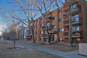#302 1829 11 AV SW, Calgary