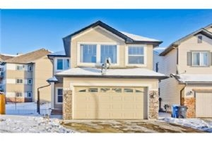 226 SADDLECREEK PT NE, Calgary