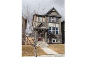 229 SKYVIEW RANCH BV NE, Calgary