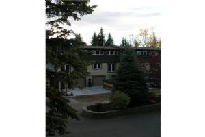 #822 3130 66 AV SW, Calgary