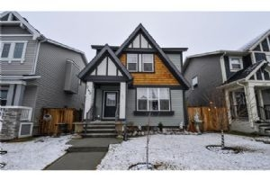 243 SKYVIEW POINT RD NE, Calgary