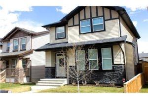139 Skyview Springs MR NE, Calgary