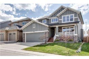 133 EVERGREEN MT SW, Calgary