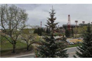 #407 2011 UNIVERSITY DR NW, Calgary