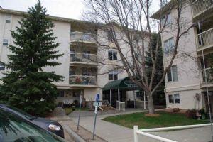 206 18020 95 Avenue, Edmonton