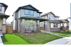 83 SKYVIEW SPRINGS MR NE, Calgary
