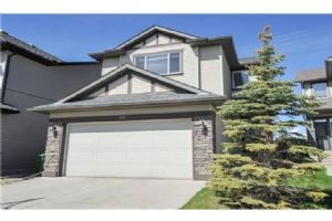 134 COUGARSTONE CL SW, Calgary