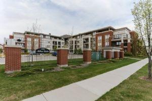 313 4450 MCCRAE Avenue, Edmonton