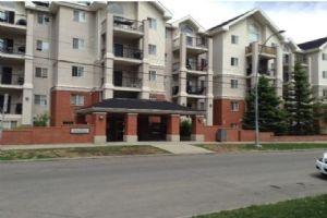 #310 126 14 AV SW, Calgary