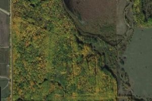 54102 RGE RD 273, Rural Parkland County