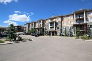 259 11517 ELLERSLIE Road, Edmonton
