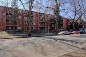 203 10514 92 Street, Edmonton