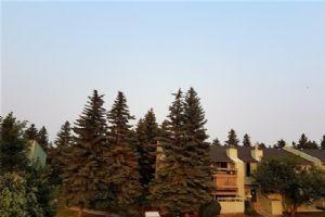 #135 10120 BROOKPARK BV SW, Calgary