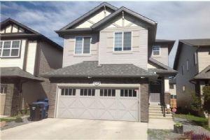 52 SKYVIEW SHORES RD NE, Calgary