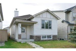 220 SADDLECREST BV NE, Calgary