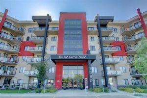 221 11080 ELLERSLIE Road, Edmonton