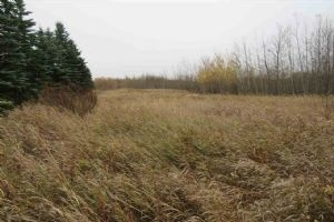 # 7 51422 Range Road 195, Rural Beaver County