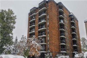 #604 317 14 AV SW, Calgary